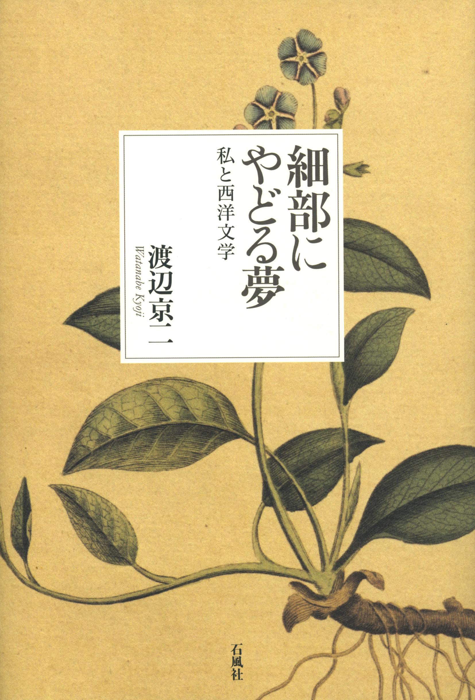 細部にやどる夢 渡辺京二 石風社 私と西洋文学 西洋文学 歴史 文芸 批評